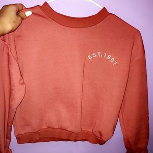 Top shot cropped sweater